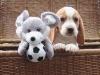 beagle-peluche-ballon