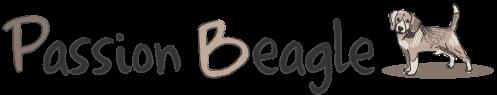 Passion Beagle