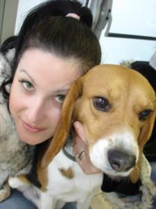 libération beagle laboratoire