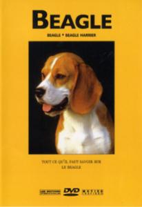 dvd beagle