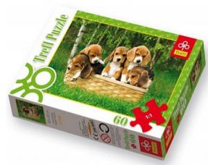 puzzle beagle