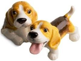 salière poivrier beagle