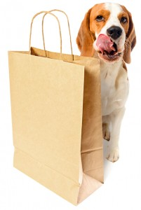 shopping beagle